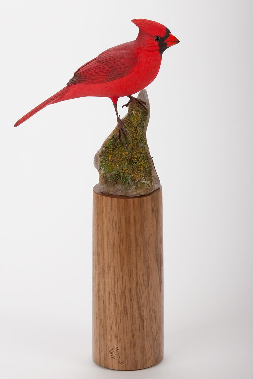 Cardinal on Rock