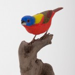 Painted Bunting on Stump